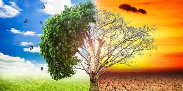 Xerrada Canvi climàtic