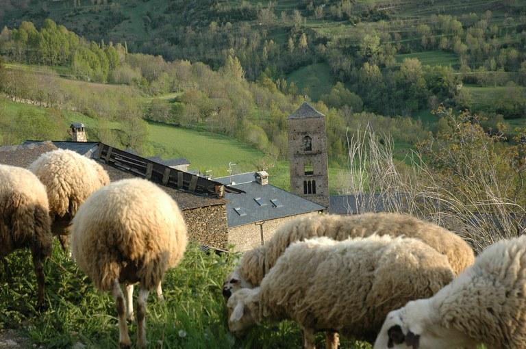 Els nostres ramaders i les nostres ramaderies